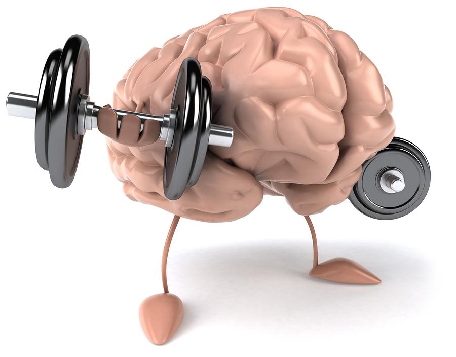 bigstock-Brain-14440166